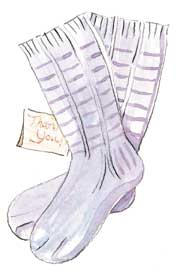 illustration of Ladder of Life socks
